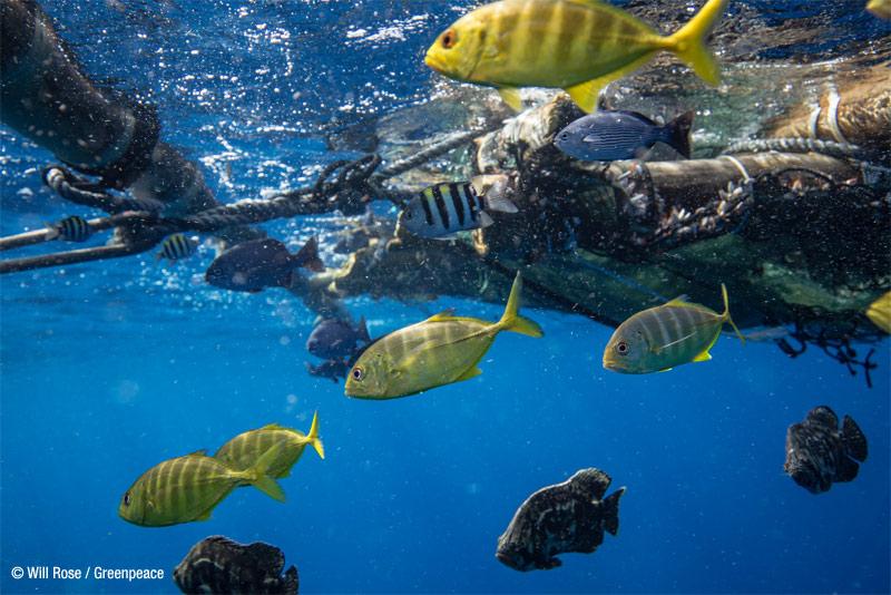 6.8 millones de toneladas de plástico a los océanos