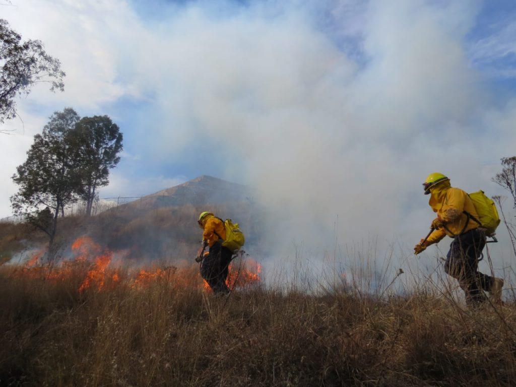 Un incendio forestal es aquel que ocurre dentro de bosques