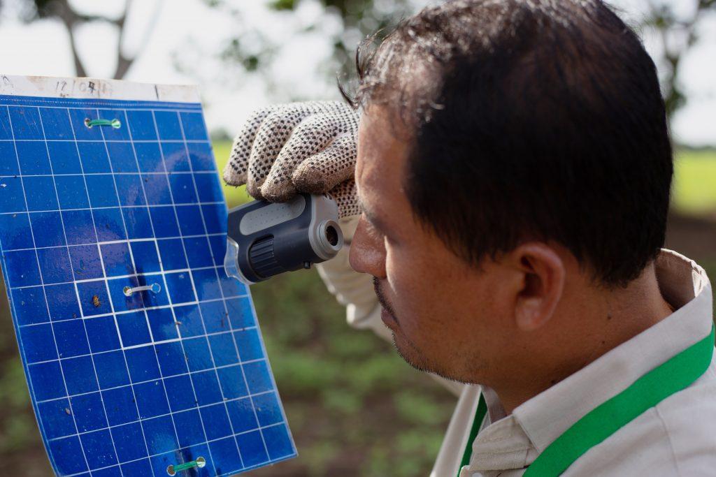 Conmemoran 120 aniversario del inicio del manejo fitosanitario en México