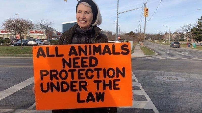 Matan a activista en Canadá y con Ley mordaza buscan silenciar caso