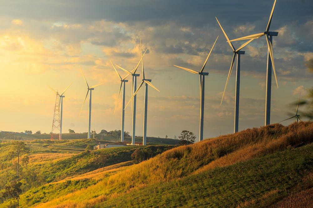 El presidente se pelea a las fuercitas con las energías renovables