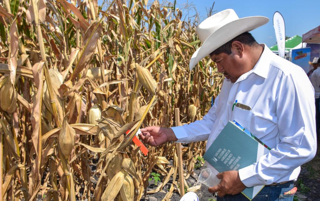 Avanza México hacia un modelo agroecológico
