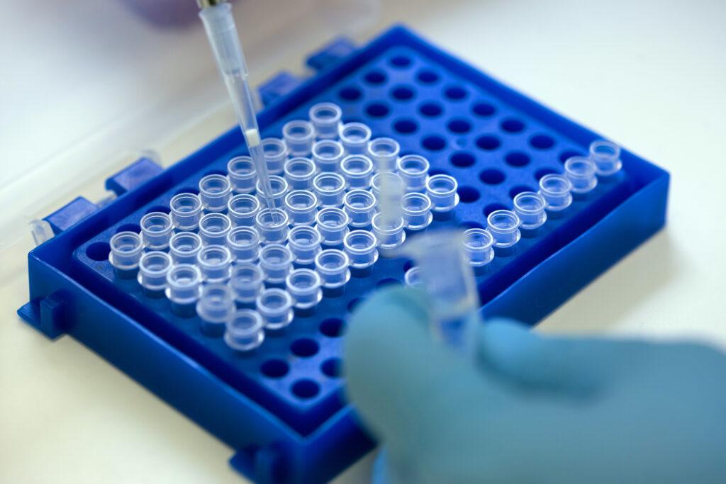 Preparan vacuna contra Enfermedad Viral de los Conejos