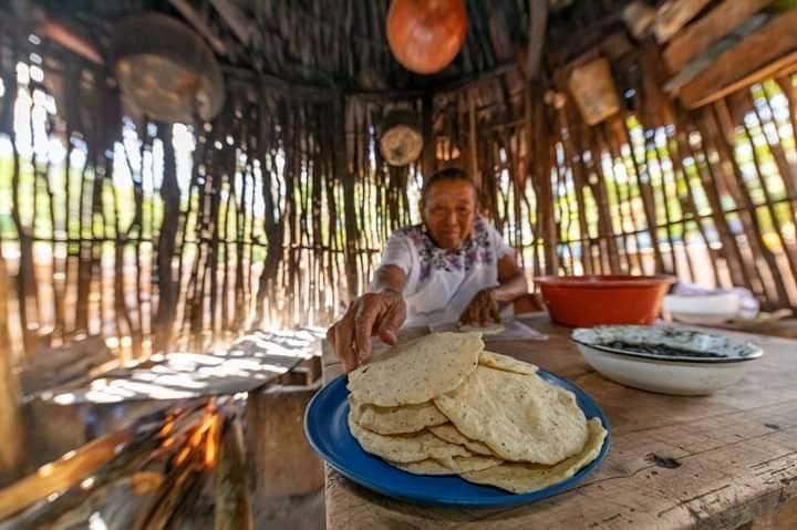 Ecoturismo en San Marcelino Tekax en nueva normalidad