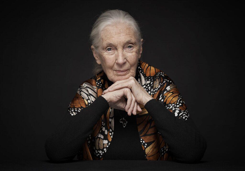 """""""Si dejáramos de comer toda esta carne"""": Jane Goodall"""