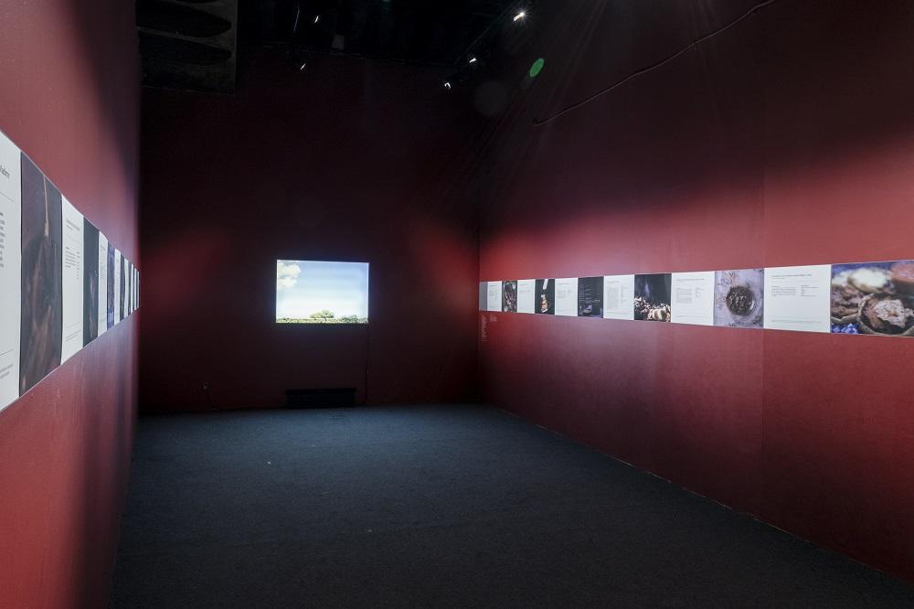Centro de la Imagen extiende el periodo de exposiciones