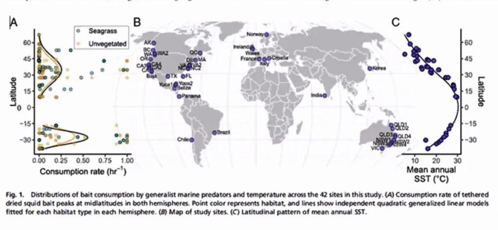 Aumento de temperatura afecta a los ecosistemas