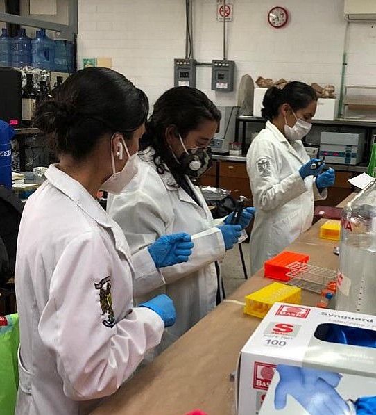 Biosensor: evitará muertes por hipertensión arterial