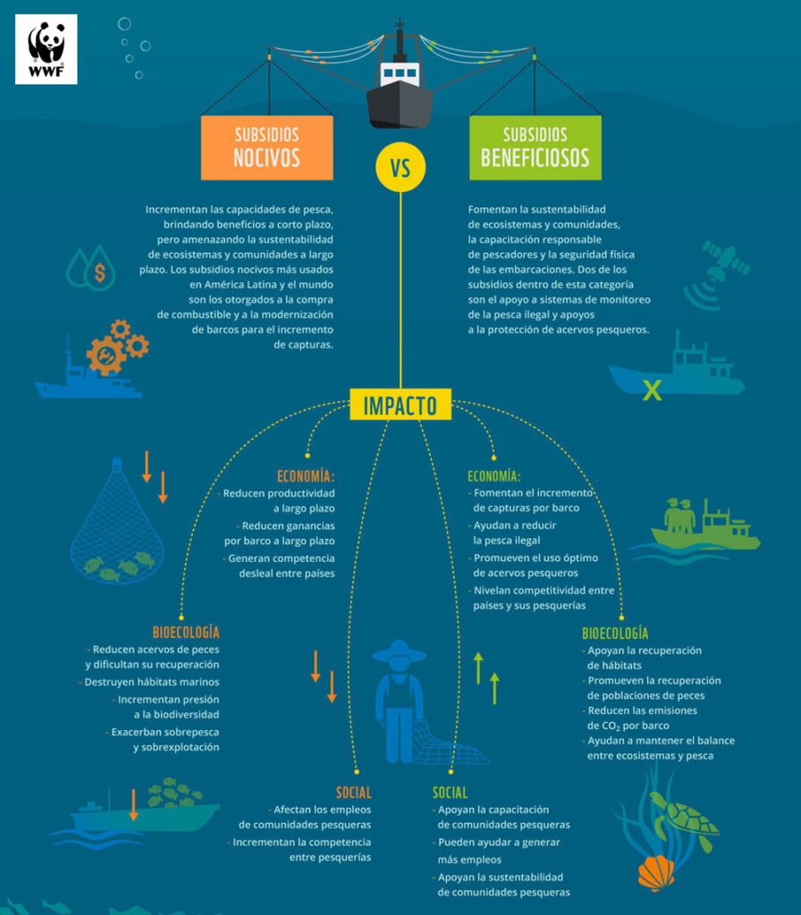 Piden eliminación de subsidios pesqueros nocivos