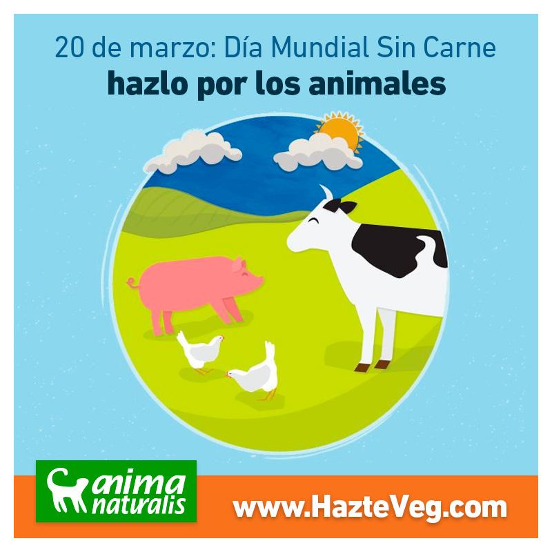 ¿Por qué un Día Mundial Sin Carne?