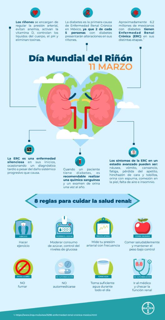 ¿Tus riñones están sanos? Detecta señales de alarma