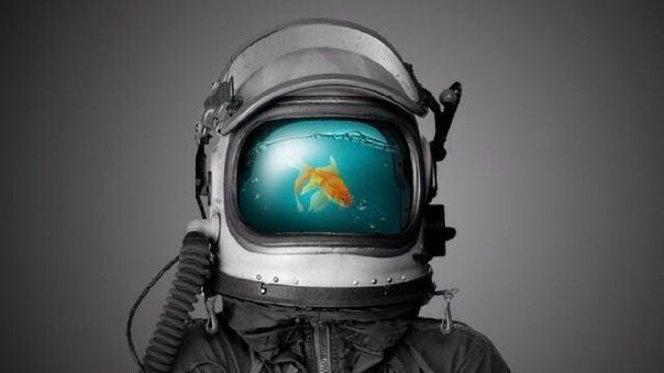 La NASA planea criar peces en la Luna