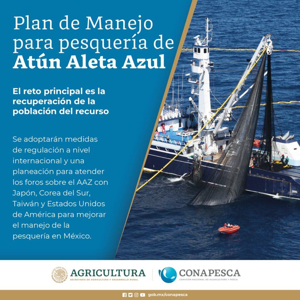 Presentan Plan de Manejo Pesquero para atún aleta azul
