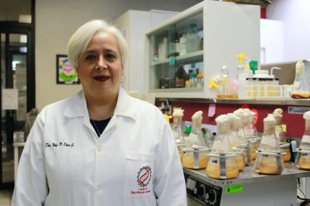 Desarrollan bioinsecticidas para combatir plagas