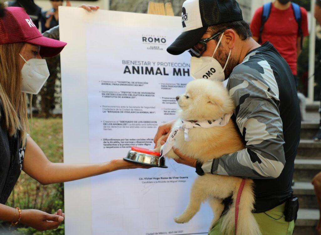 Propone Romo agenda animalista para Miguel Hidalgo