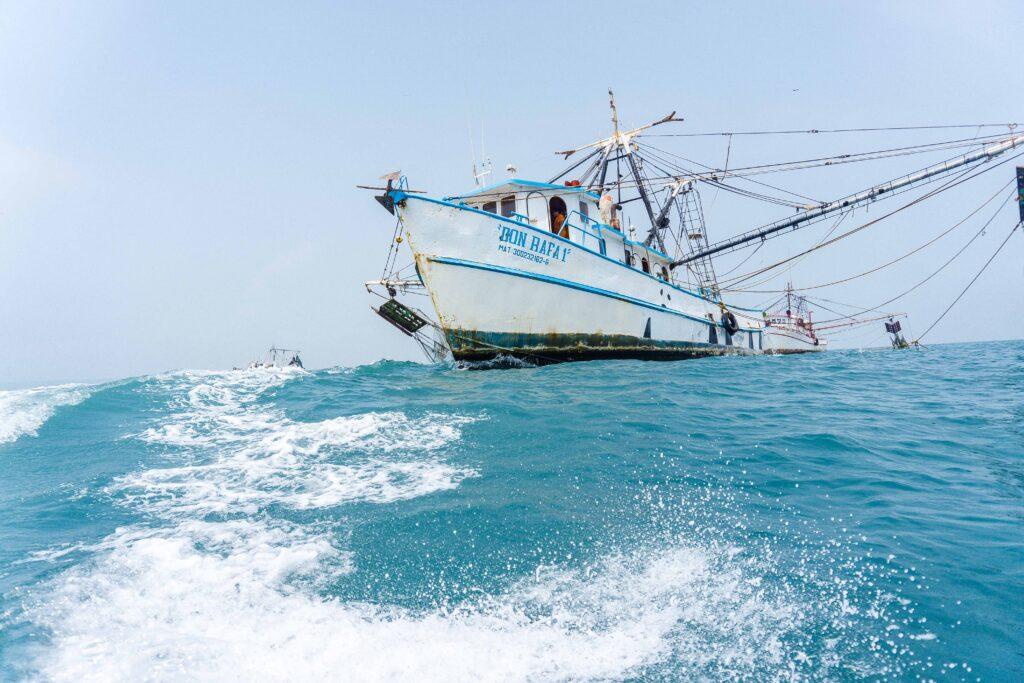 Camarón de ribera podrá seguir exportándose a EU