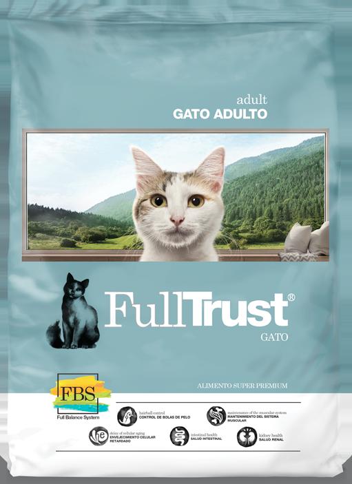 Proponen alimentos para gatos en base a biotecnología