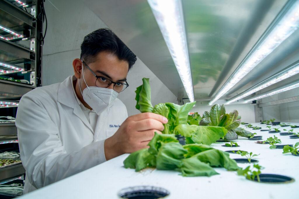 Fomentan proyectos agrícolas productivos