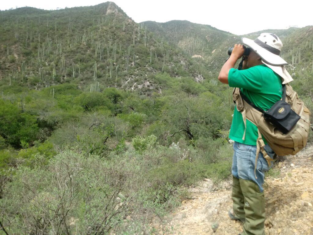 Cumple Conanp 21 años de conservar el territorio