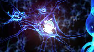 Promoverán terapias celulares para Parkinson