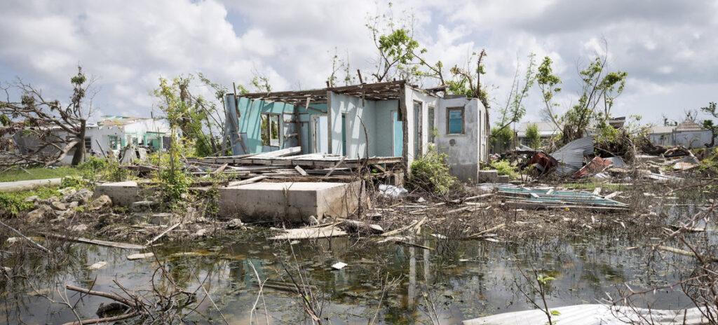 Entra en vigor Nueva Ley de Cambio Climático