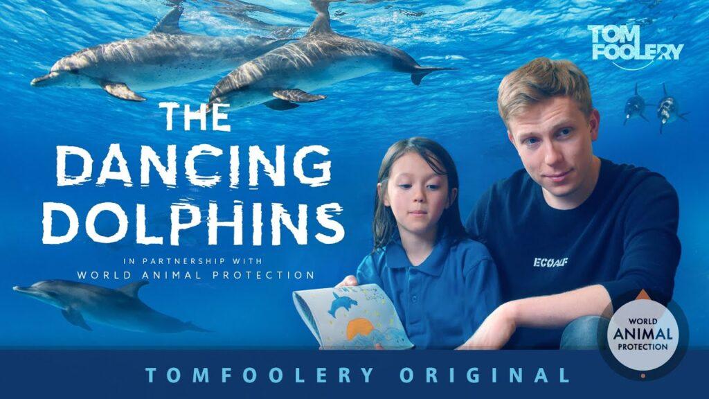 Los Delfines Danzantes del Youtuber Tomfoolery