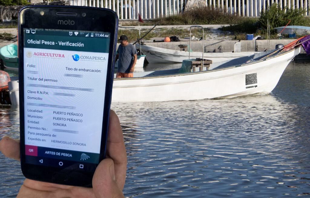 Permiso digital para pesca comercial eliminaría corrupción