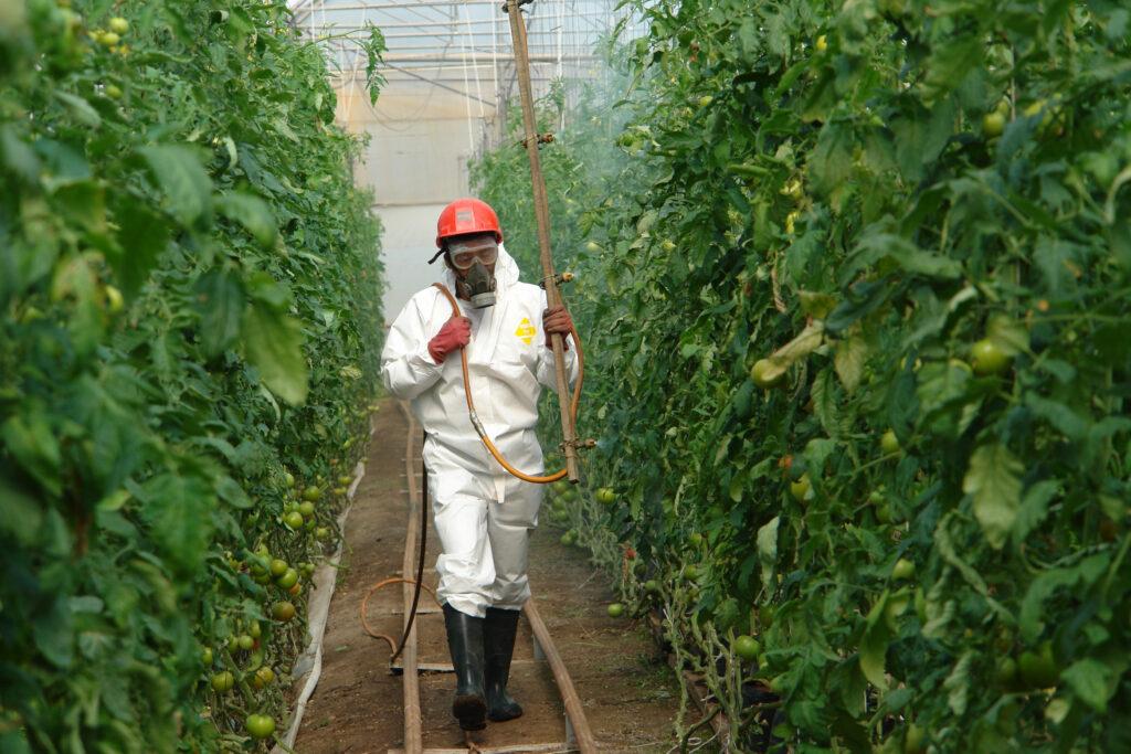 Declaran 1 de julio Día Nacional de la Sanidad Vegetal