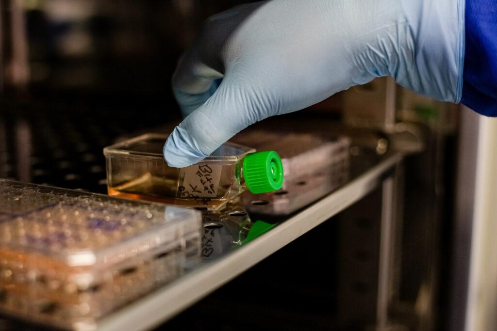 Reconocen combate a resistencia antimicrobiana