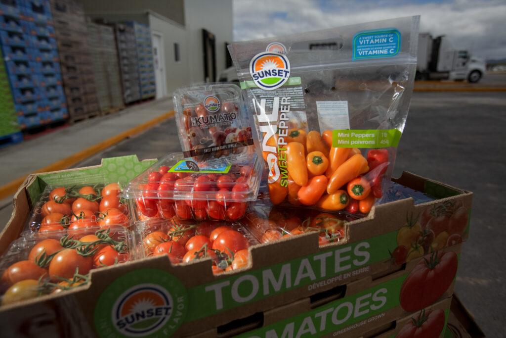 Balanza comercial agroalimentaria registró superávit