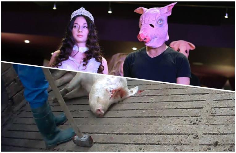 #NuestrasPlumas/#MeToo y la difamación del cerdo