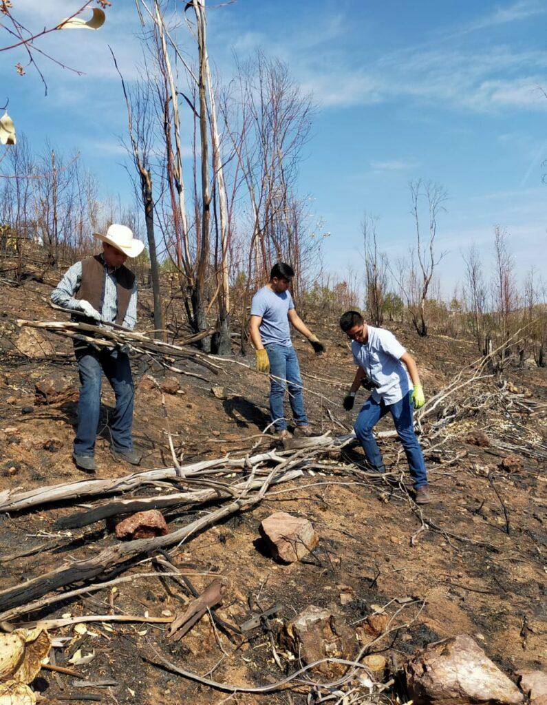 Politécnico inicia campa a para rescatar Cerro de la Bufa
